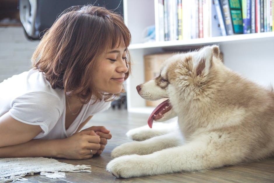 L'importance d'un animal de compagnie pour garder le moral